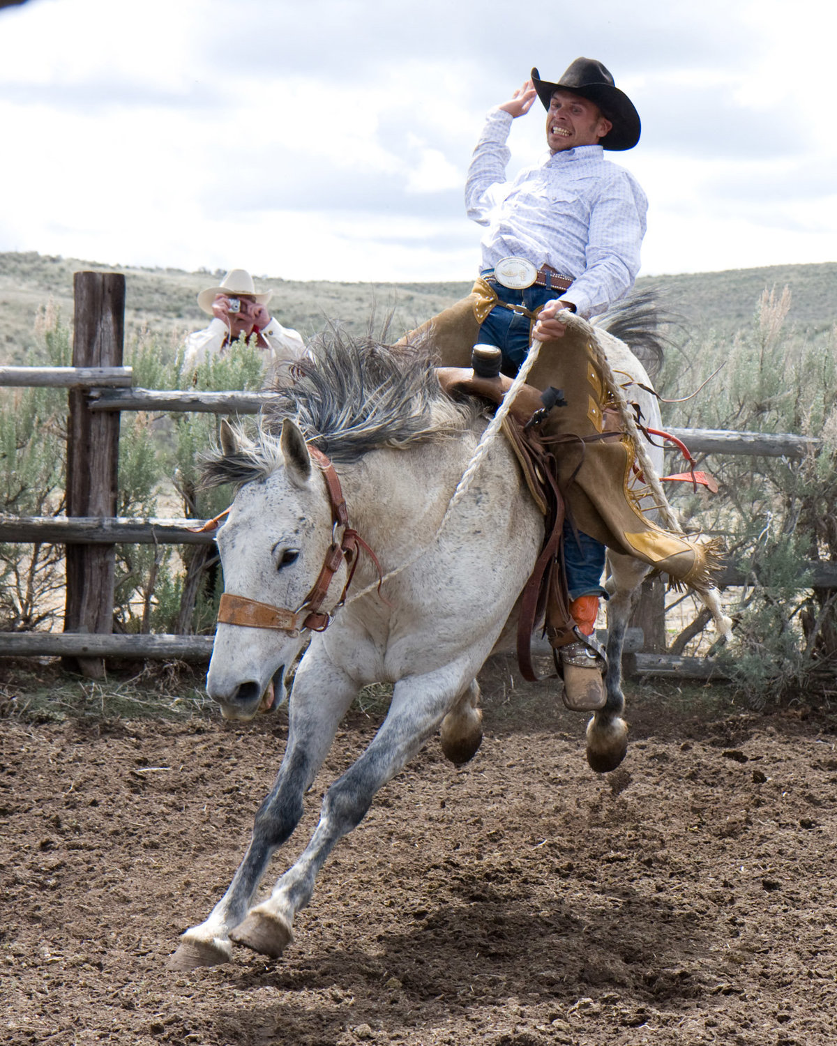 cowboy bucking bronk photographer  Lynette Smith Photography