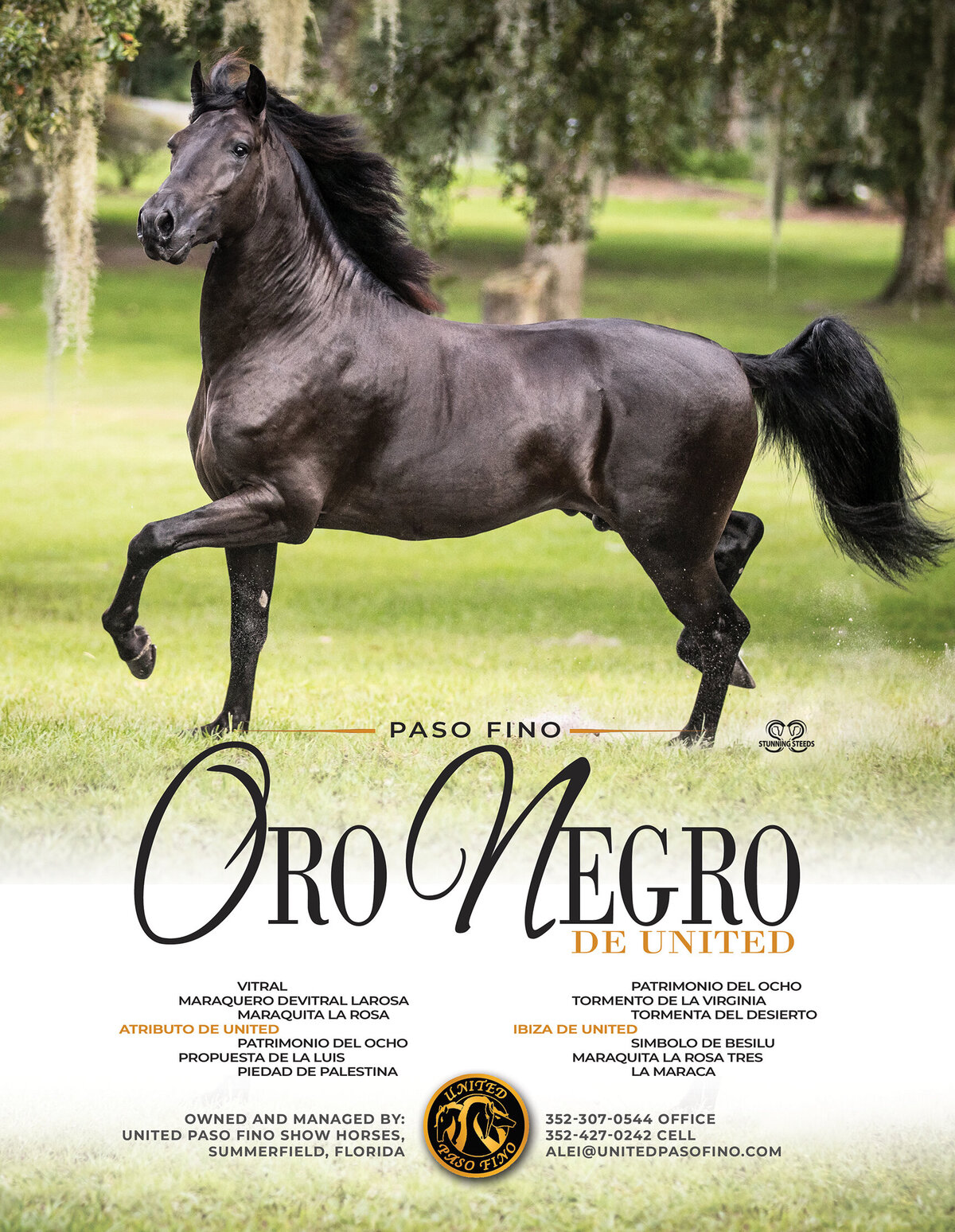 UNITED-Sept-Oct 2020 - Oro Negro-PFHW Full pg