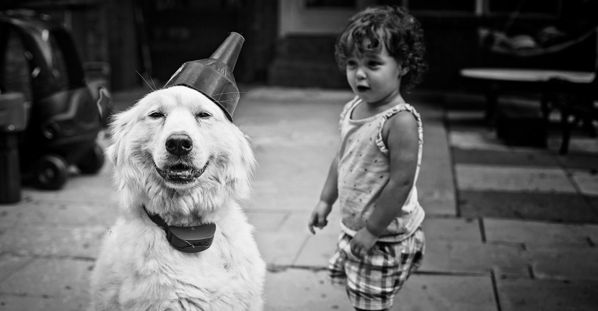 charlotte documentary photographer jamie lucido captures the friendship between dog and child with a funny image of the dog wearing  a makeshift hat