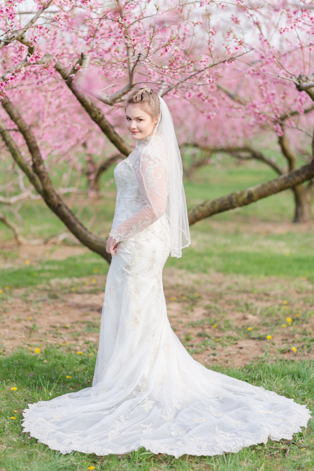 Alissa Wedding Dress-WEB-1
