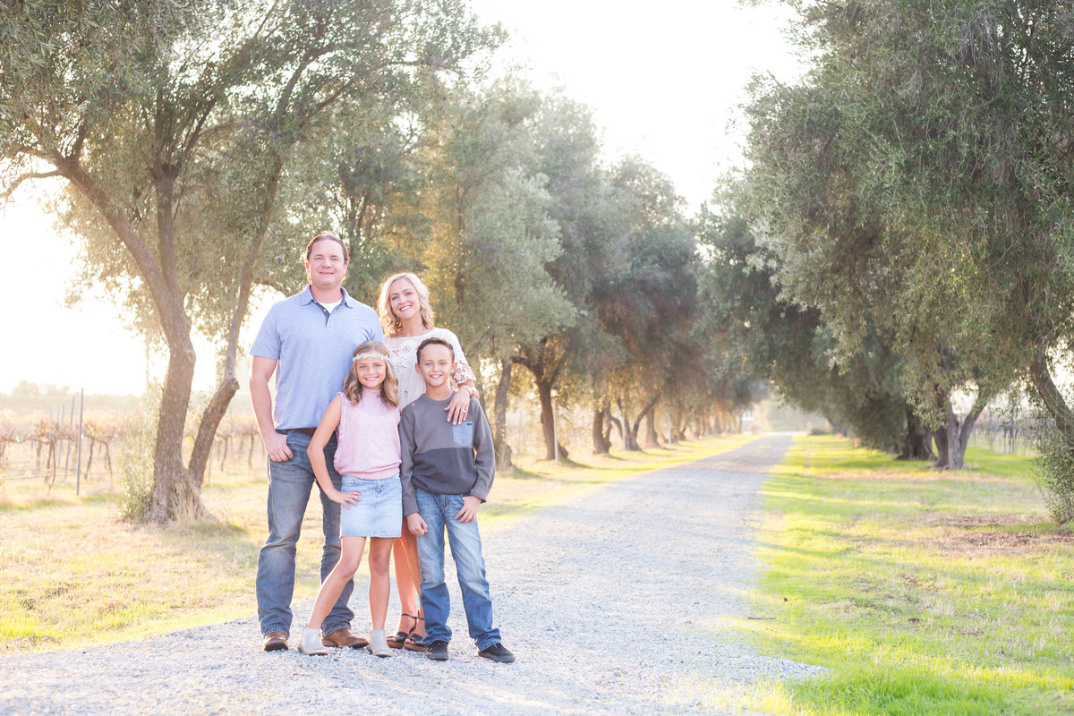 family poses for warm glowly portrait in olive tree grove