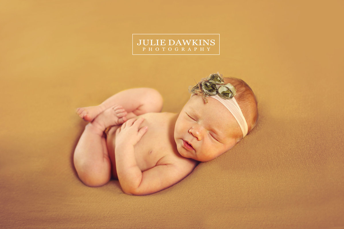 Newborn Photographers Broken Arrow Ok Julie Dawkins Photography