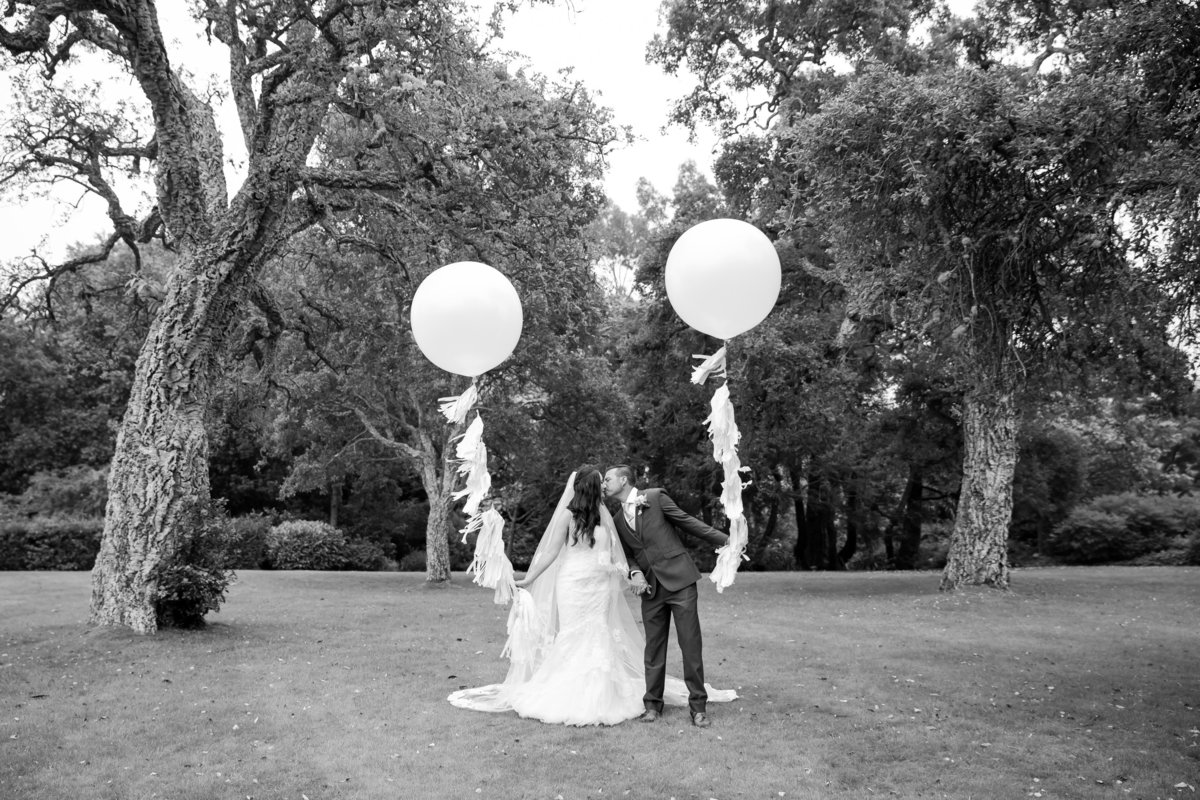 giant balloons mount edgecumbe
