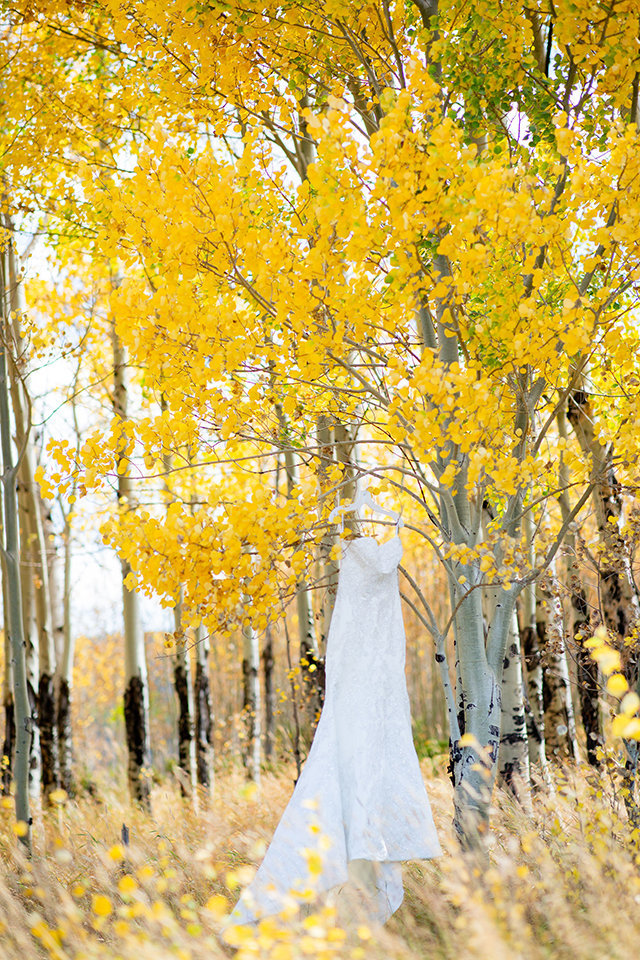 granby-colorado-Strawberry-Creek-Ranch-Wedding-Ashley-McKenzie-Photography-tropic-meets-mountain-wedding-colorful-yellow-aspen-trees-with-wedding-dress