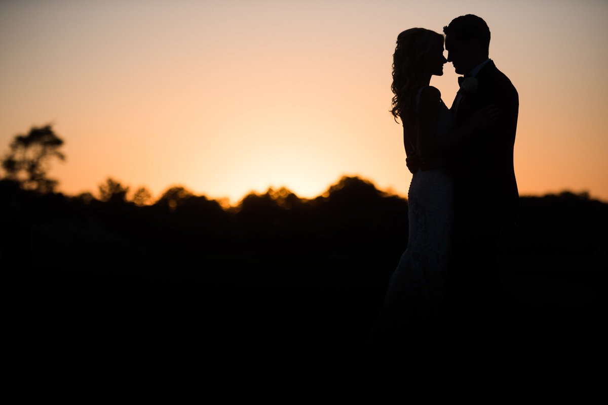 Couple on wedding day, sunset silhouette with treeline, Chicago.
