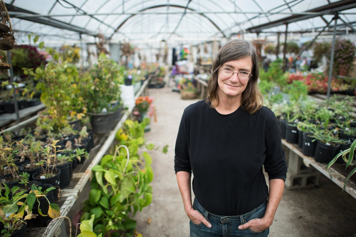 Owner of plant nursery in greenhouse.