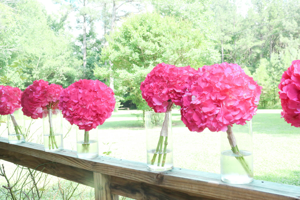 virginia wedding country pink southern belle (1 of 1)-27