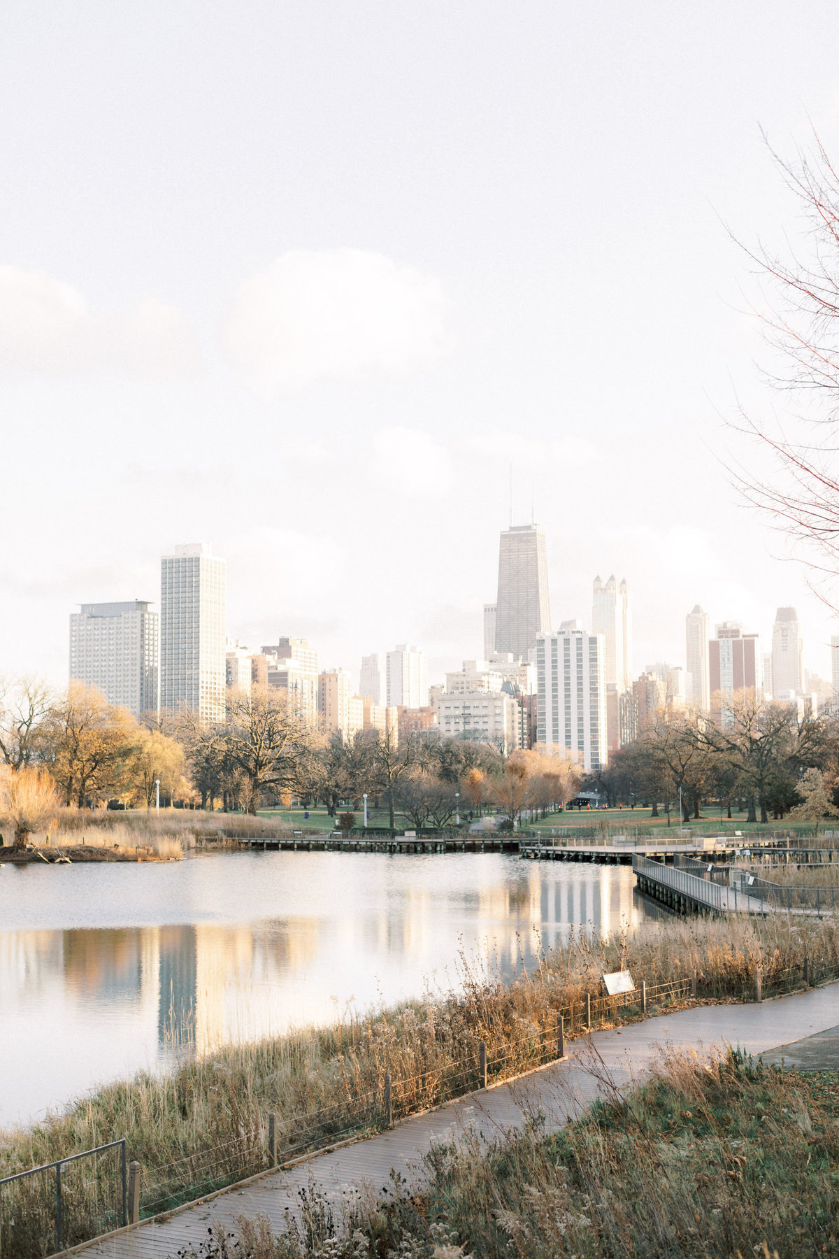 TiffaneyChildsPhotography-ChicagoWeddingPhotographer-AnneMarie+Connor-LincolnParkNatureBoardwalkEngagementSession-128