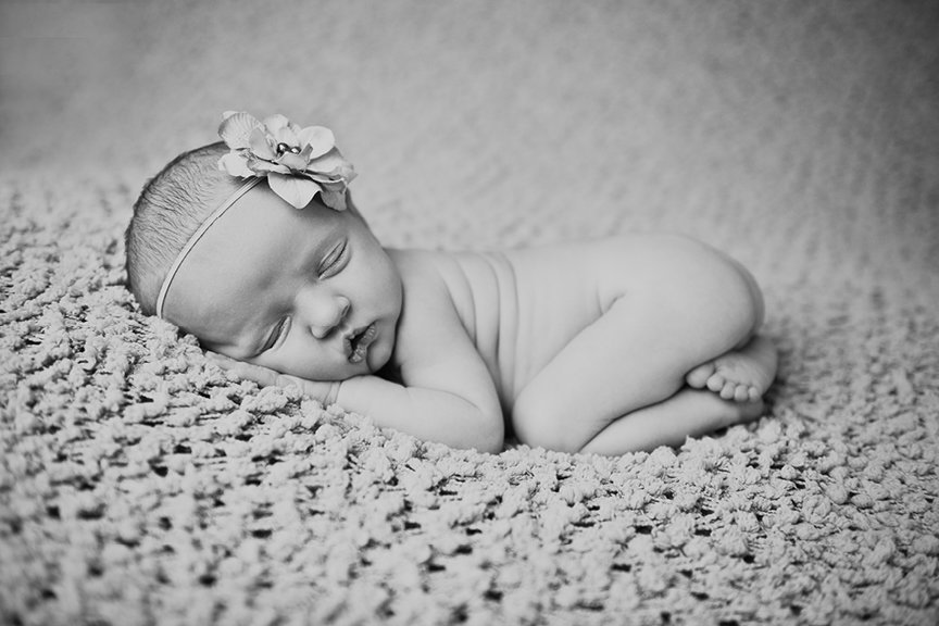 2014_newborn_portrait_collections_edmonton15
