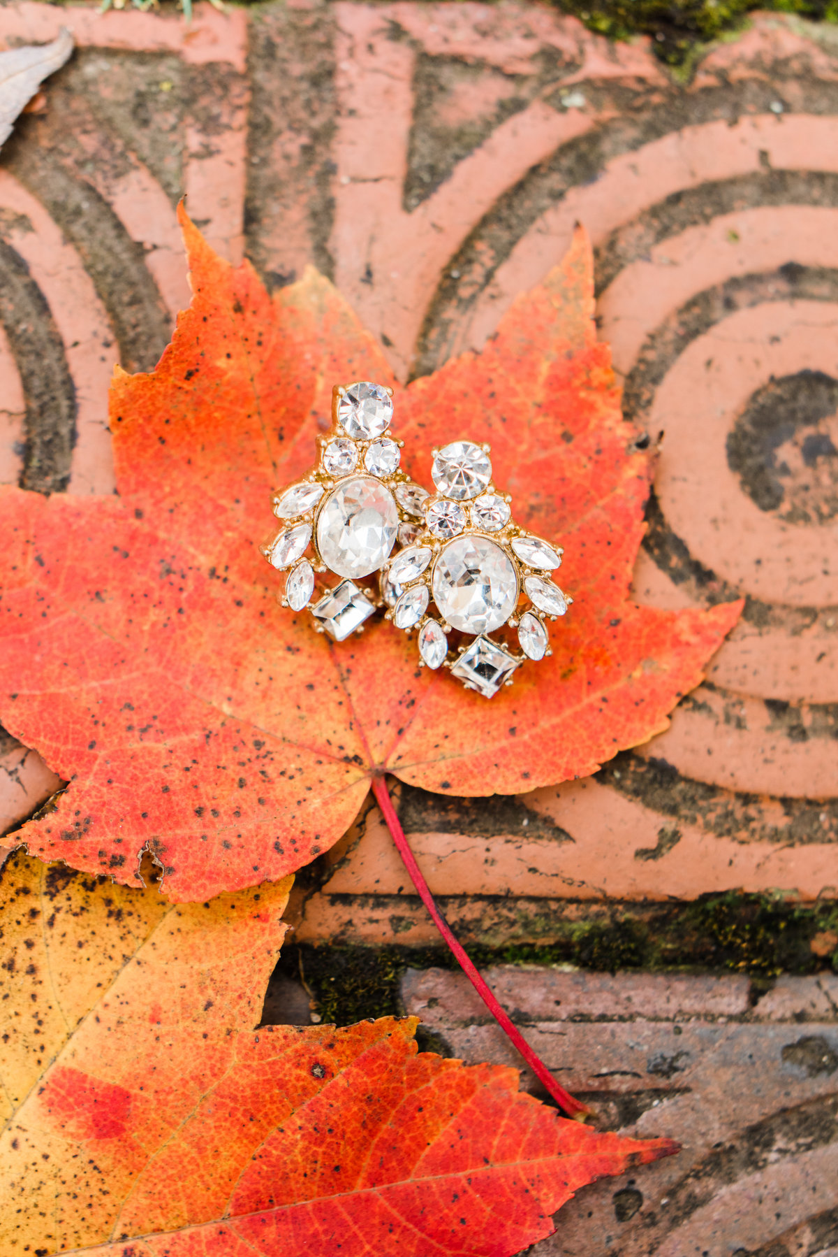 wedding jewelry on a fall leaf photo