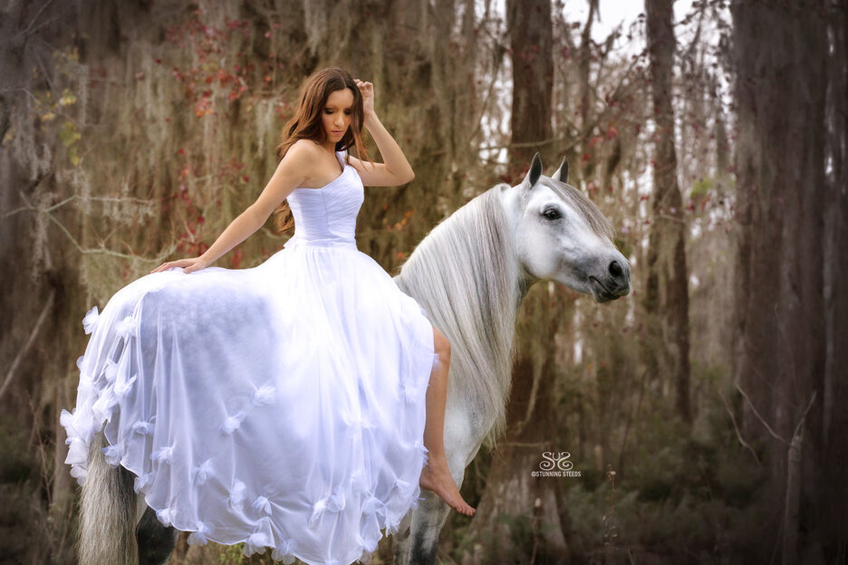 stunning-steeds-photo-wedding-dress-white-horse