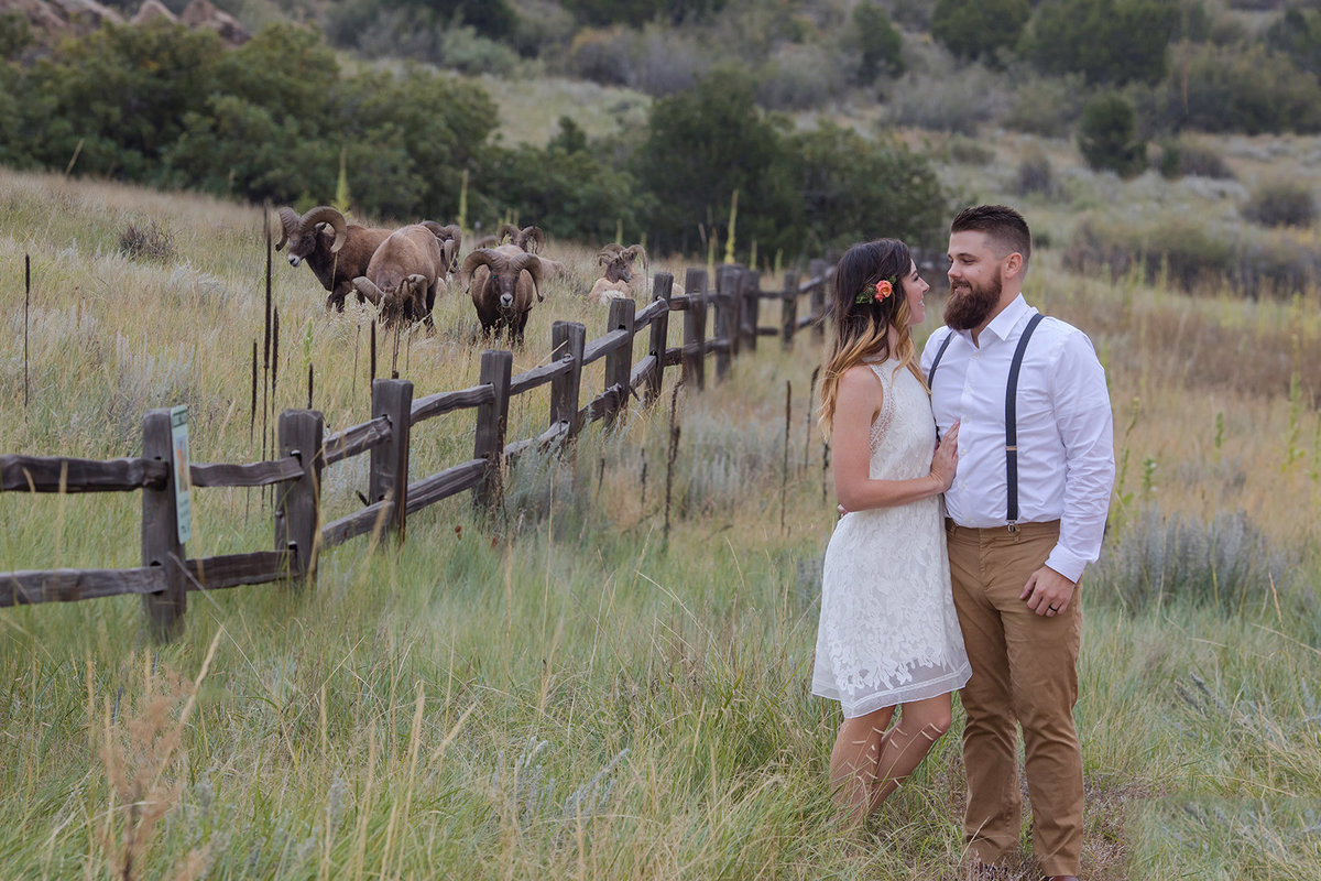 Garden of the Gods Elopement Preview-1004