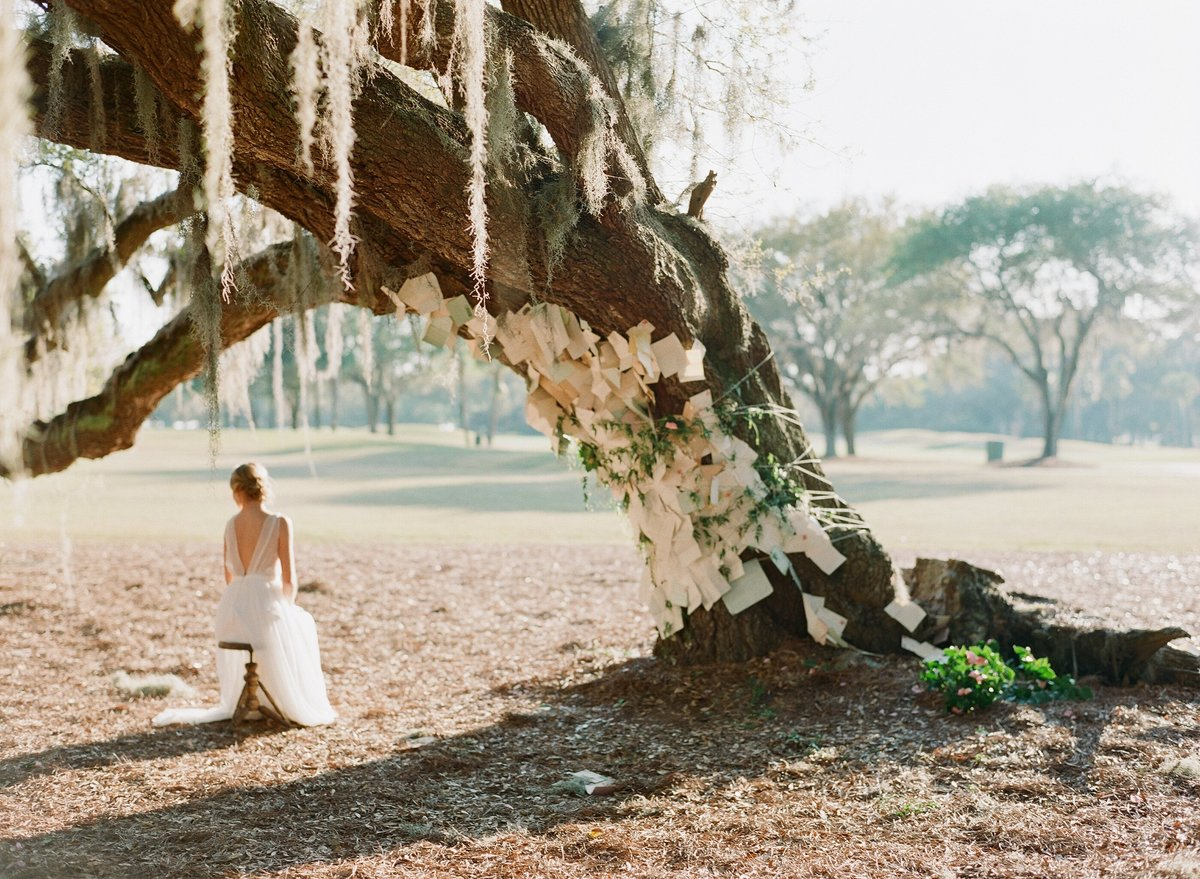bride, love letters, tree