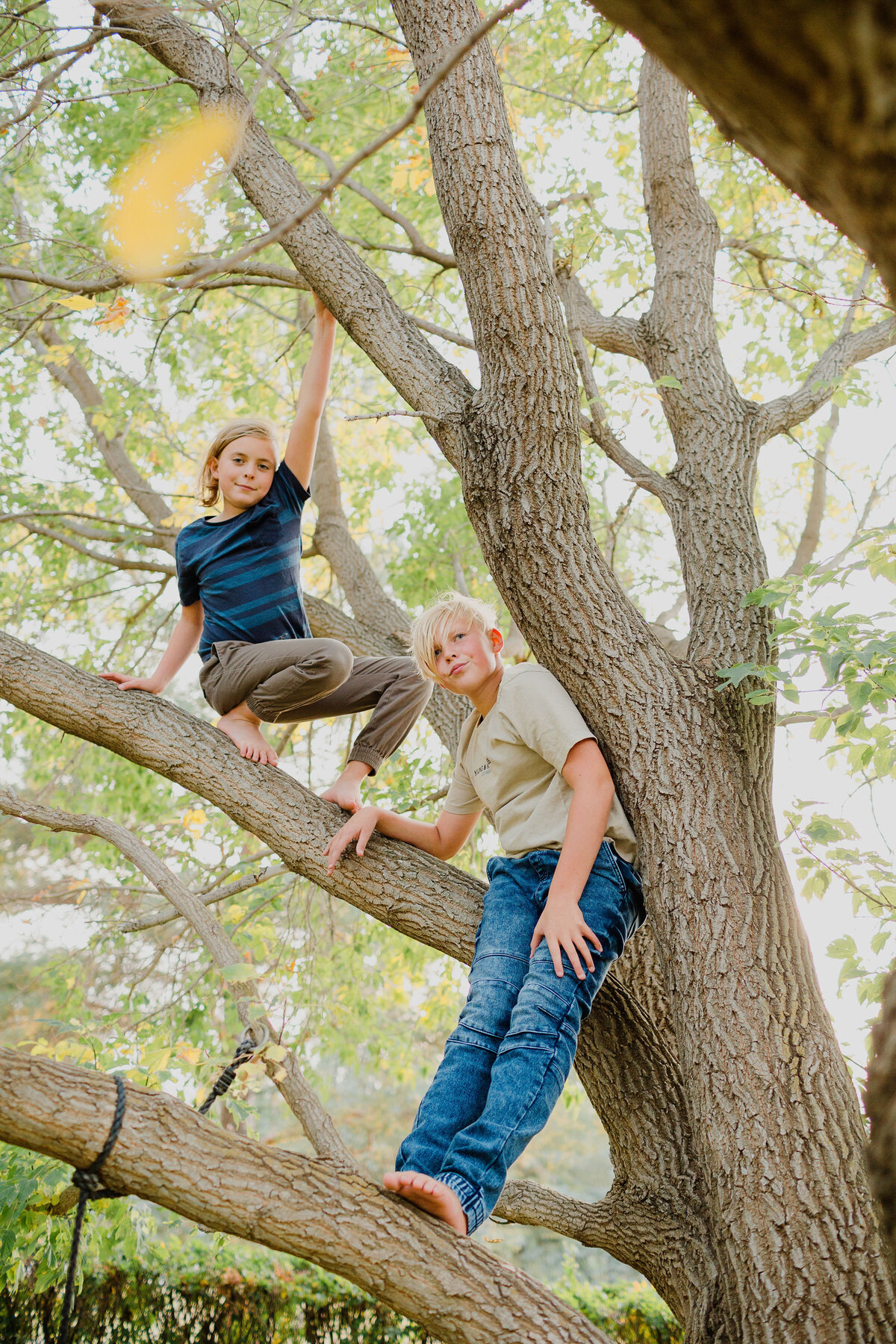 Climbing trees barefoot and wild
