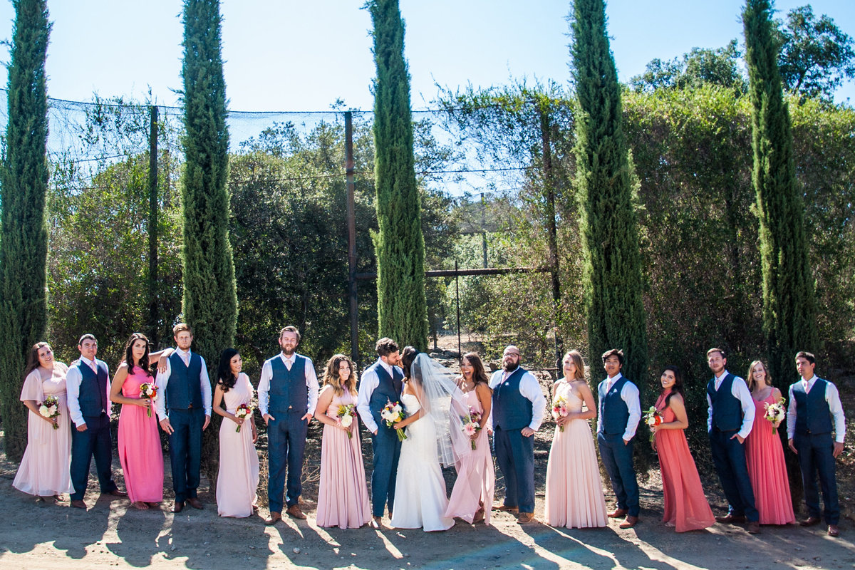 San Diego bridal party outside at Milagro Winery