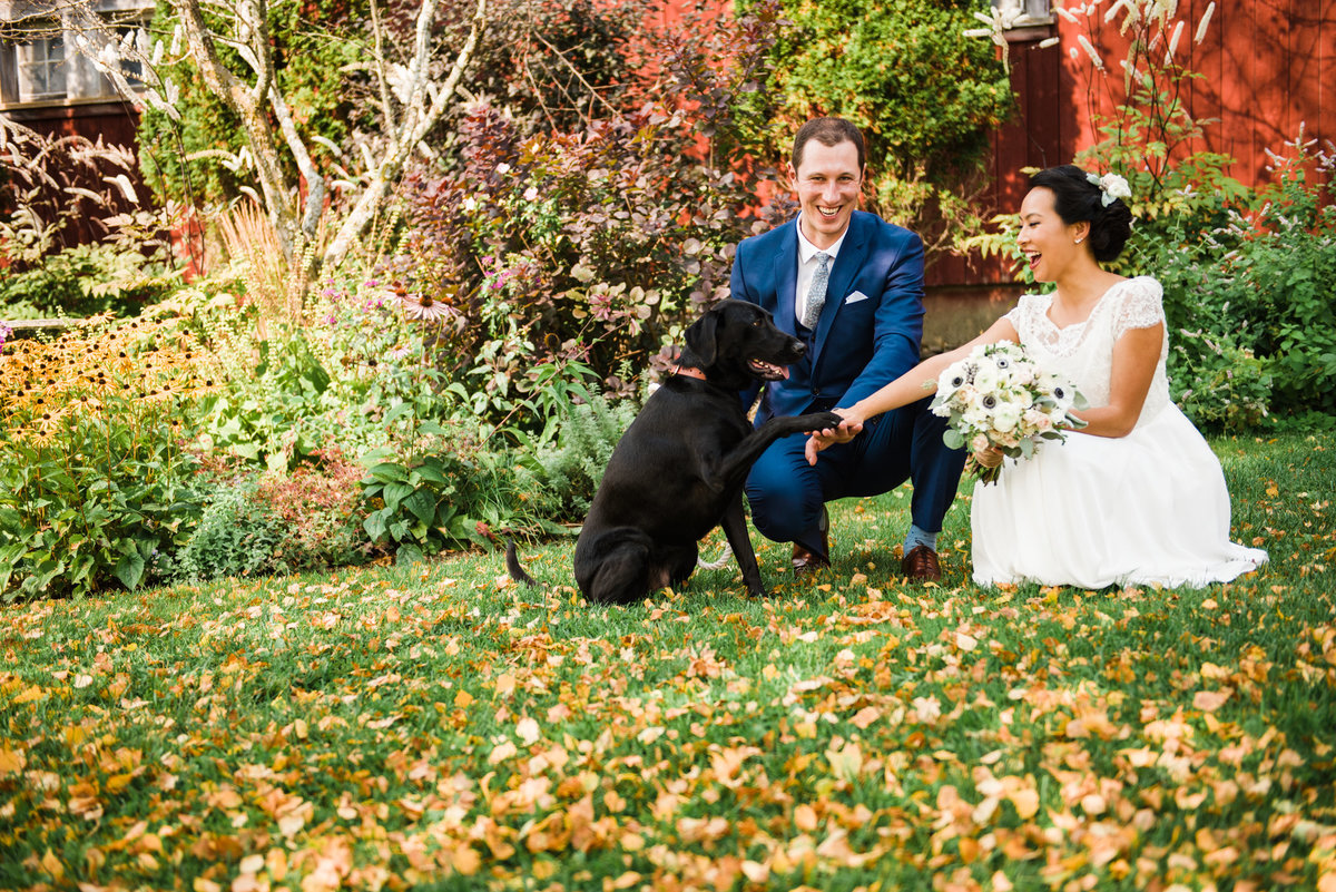 Vermont wedding photographer, first look with dog