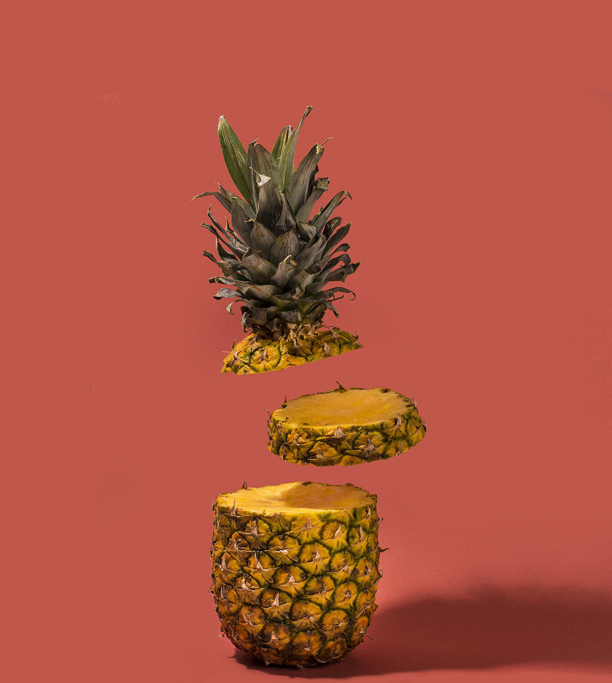 sliced pineapple photograph with slices