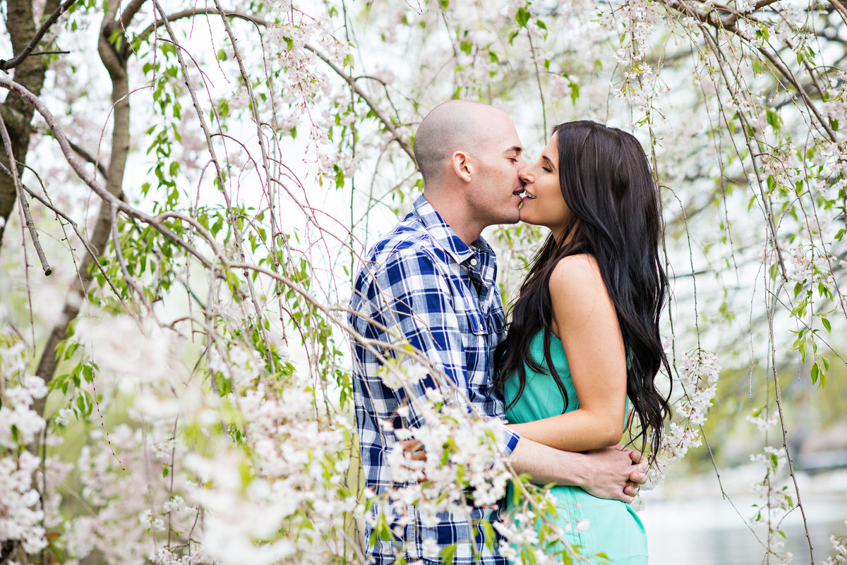 A couple kiss under a flowering dogwood tree in philadelphia.