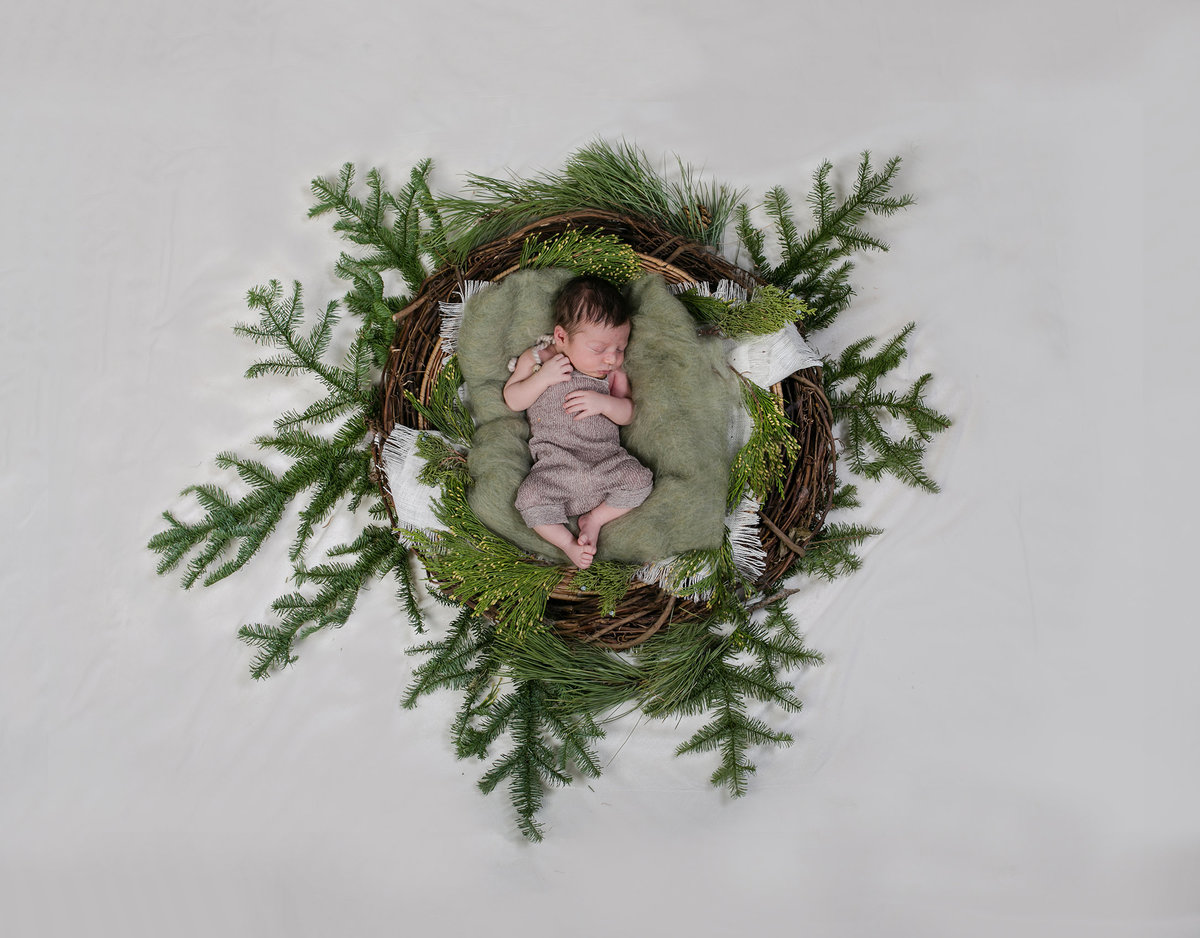 newborn photos at Christmas
