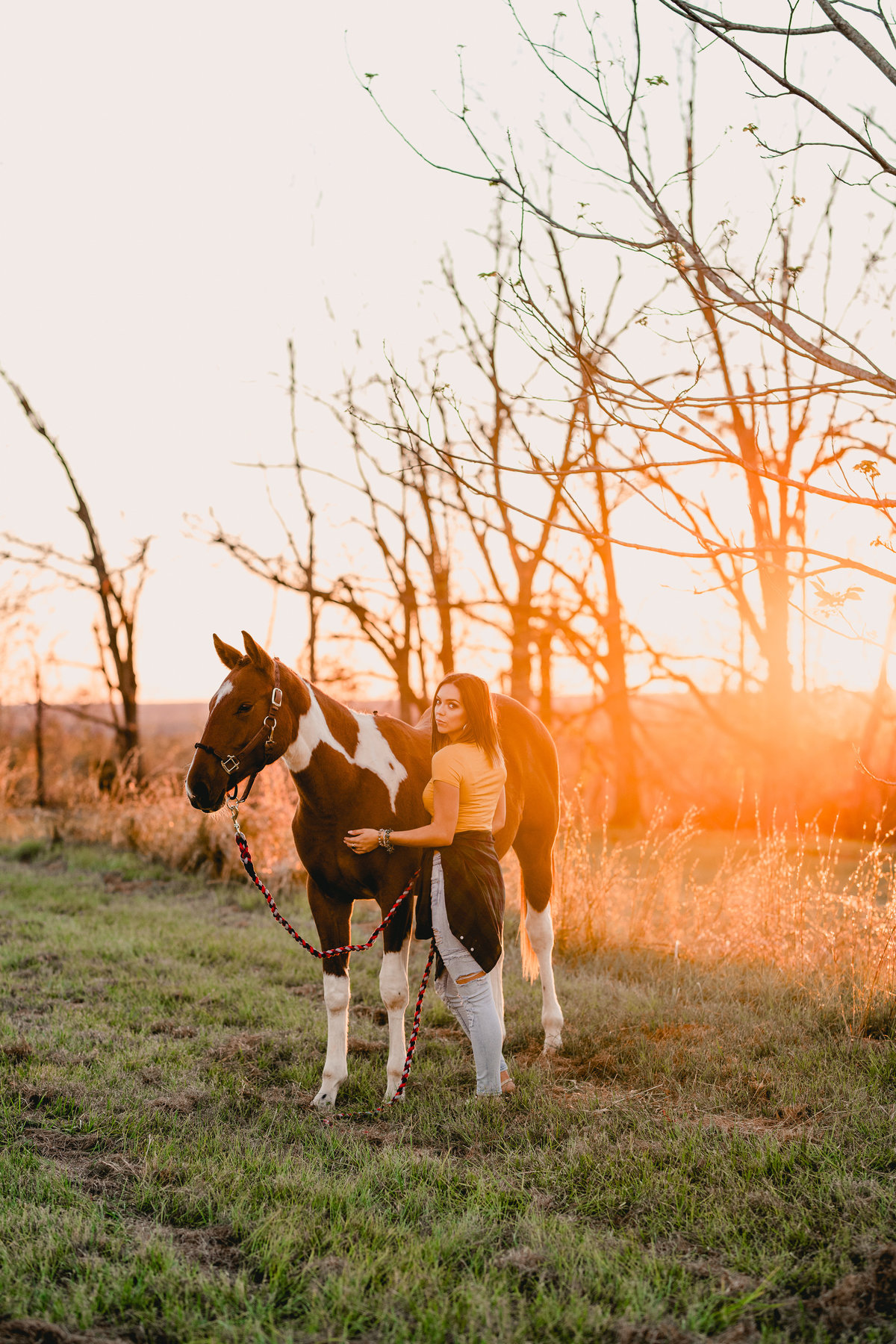 Sunset photographer specializing in natural light with horses in Florida.
