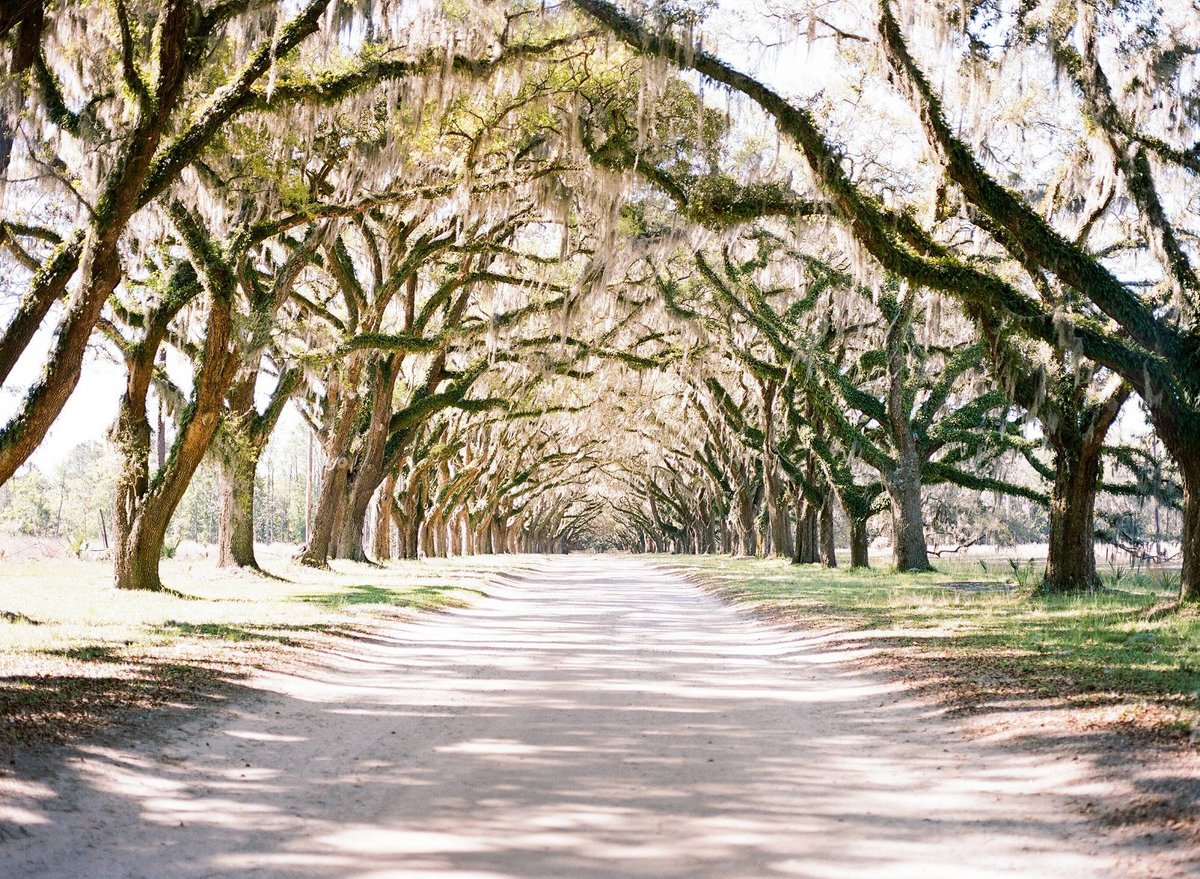 Savannah engagement, Savannah Wedding Photographer, Fine Art Film, Destination Wedding Photographers, Henry Photography_2902