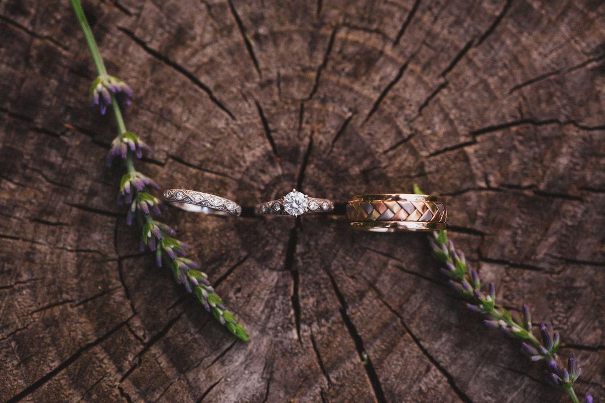 wedding rings on a tree stump at general potter farm by jana scott photography