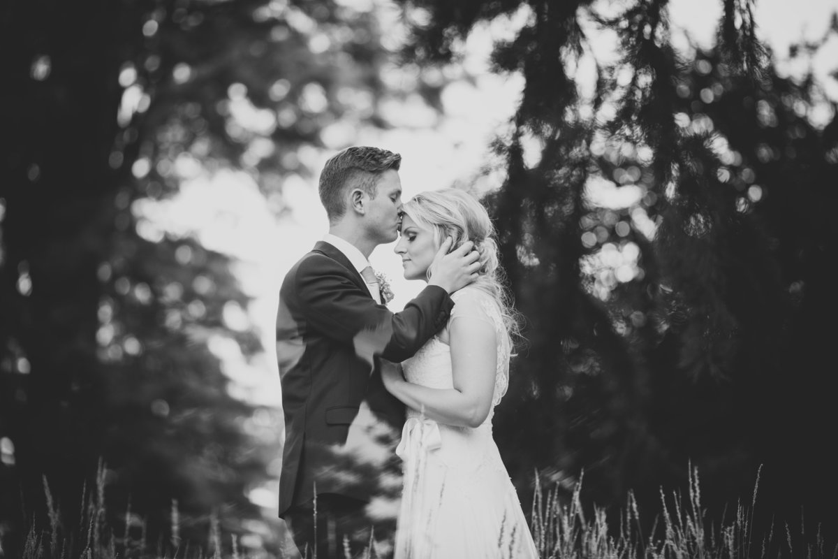b&w photo of groom kissing brides forehead in field of corn