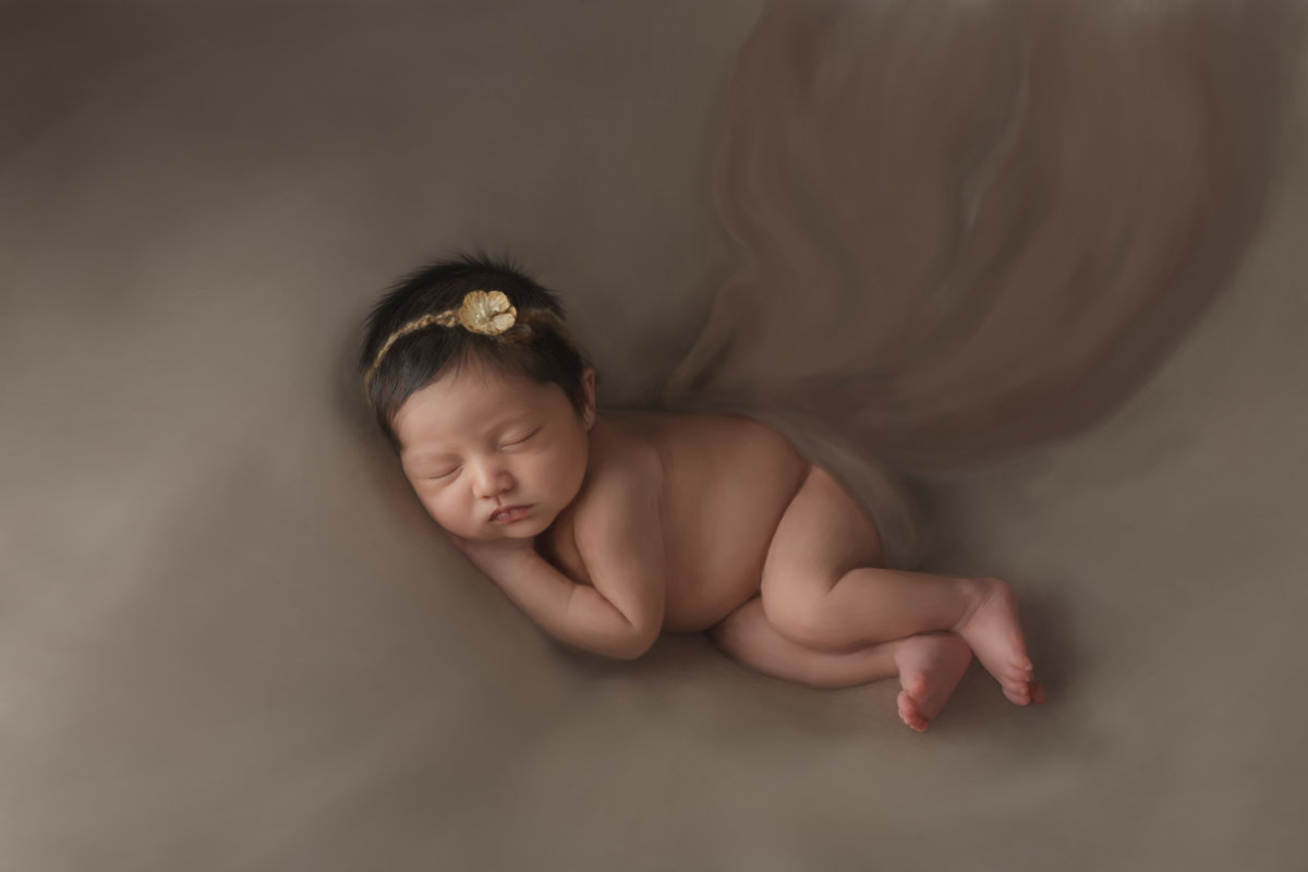 Hudson Valley fine art newborn photography painting West Point NY photographer