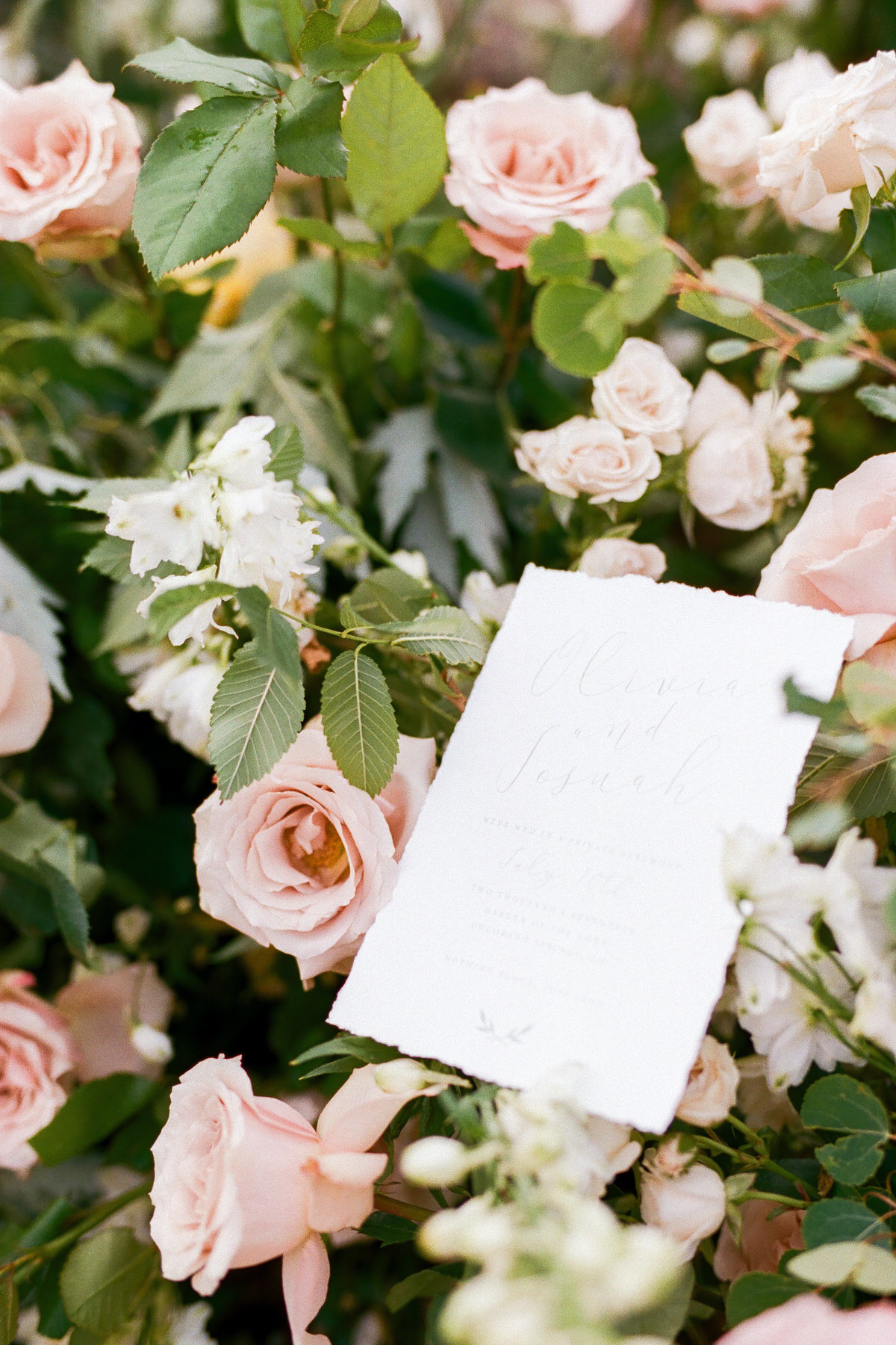 Smith House Photography | Coloradomelovely-433