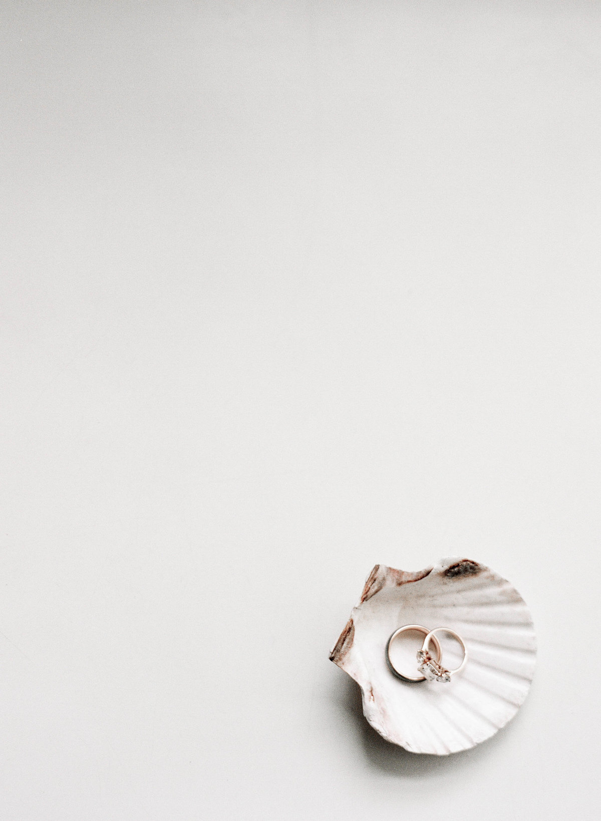 wedding bands in seashell boston photographer