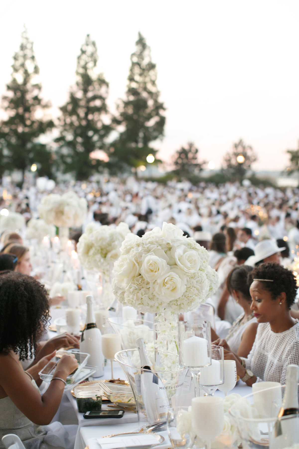 Amy_Anaiz_Le_Diner_En_Blanc_New_York_City_025