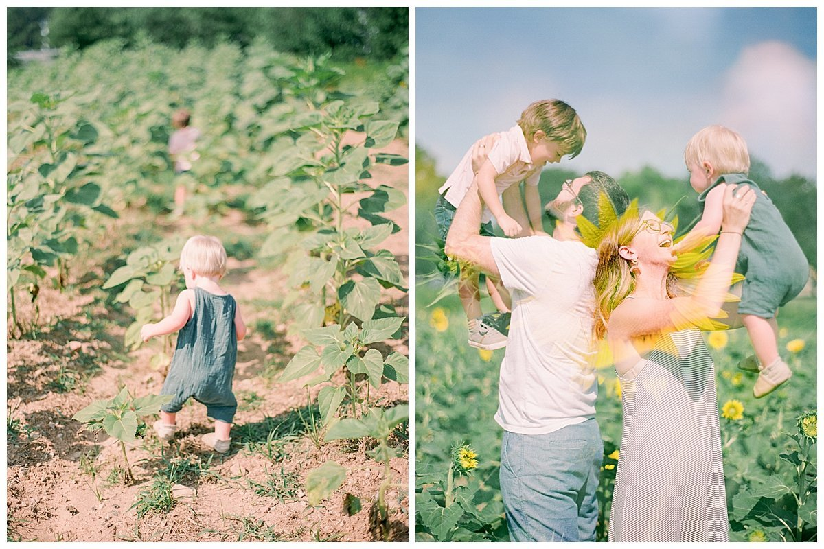 family portraits in sunflower field