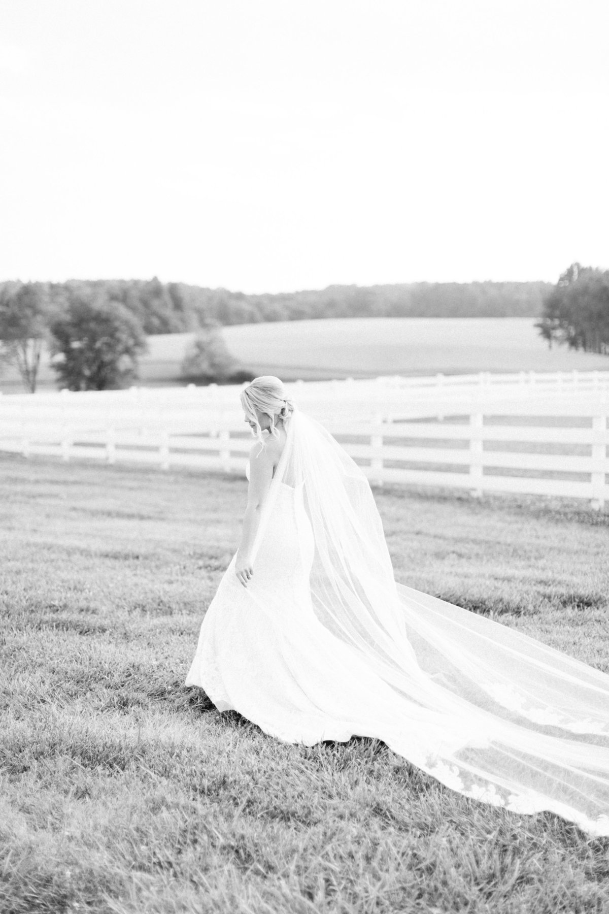 AshtonScott_Bridals-7513