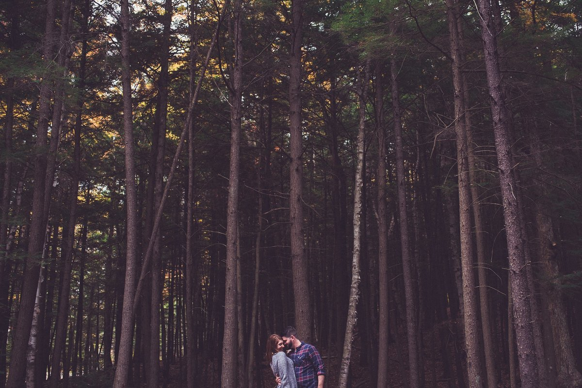 forest-engagement-photo