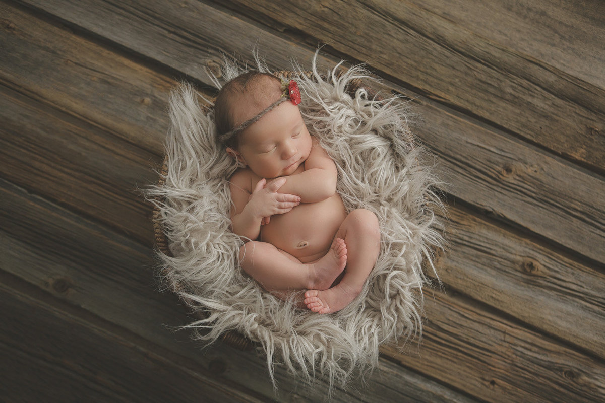 west point ny hudson valley sleeping newborn baby curled up in a basket with fur and headband on a barn wood reclaimed floor by Hudson Valley professional photographer Autumn Photography Cornwall NY photo studio