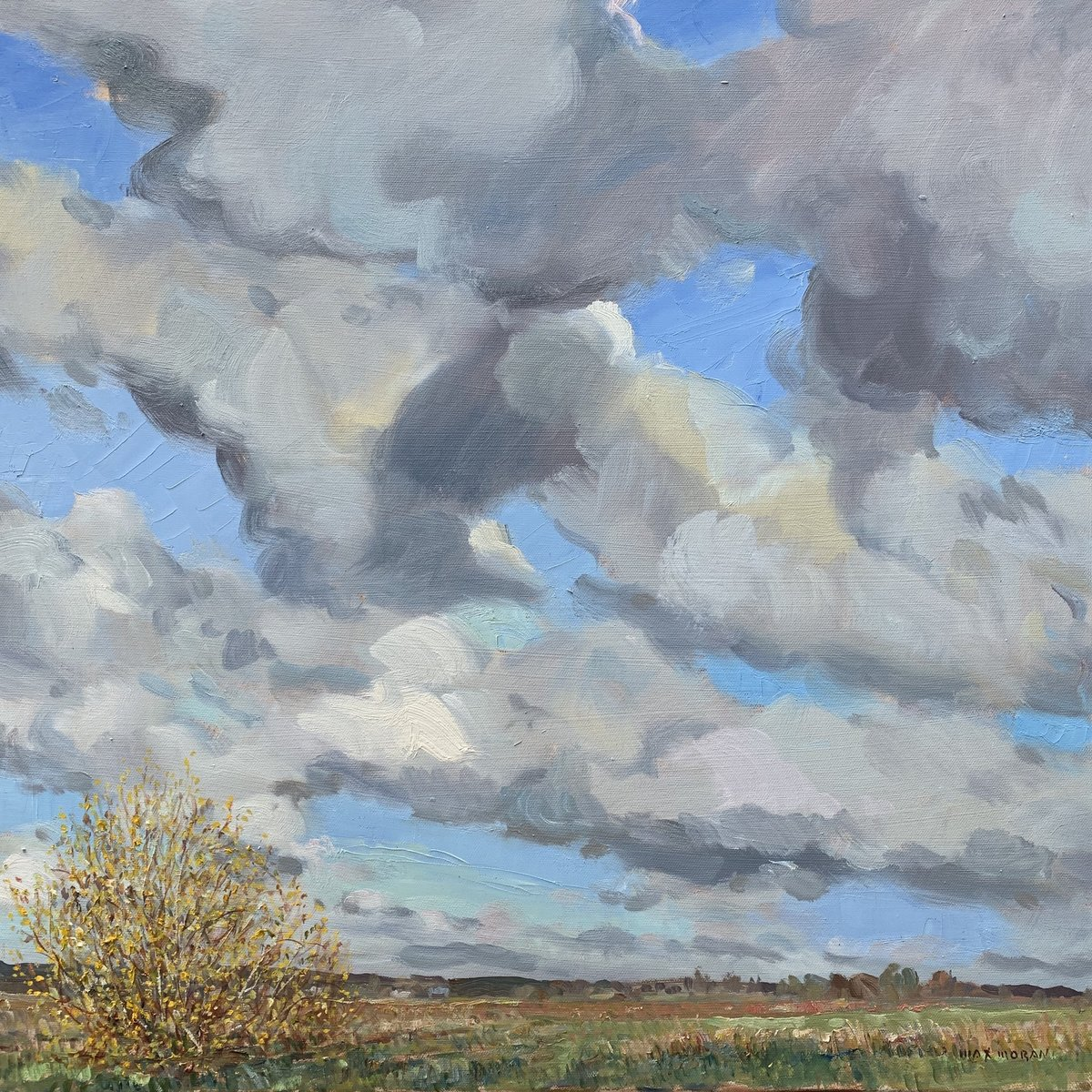 Forysthia Clouds on Horton Road 24 x 24 ooc 3500