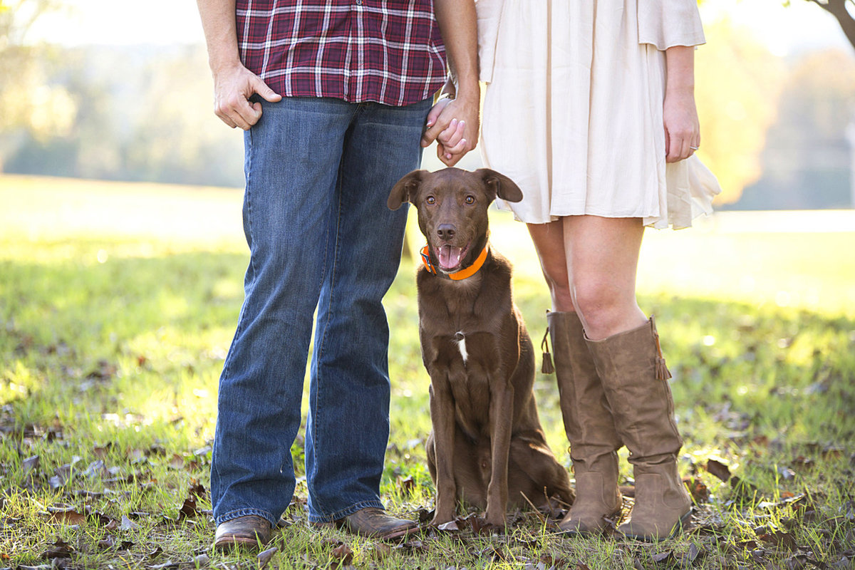 Nashville-engagement-photos-dogs