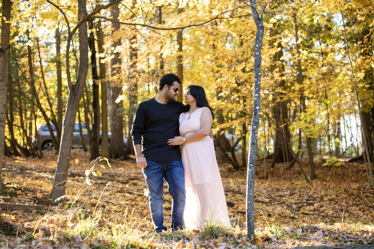 Engaged couple standing between two trees with the bright yellow autumn leaves around them as they gaze at each other at the Forks of the River Conservation Park