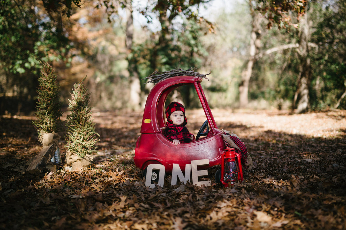 Photo of one year old baby sitting in a red toy car with stick strapped to the top of the boys red car at Denman Estate Park.