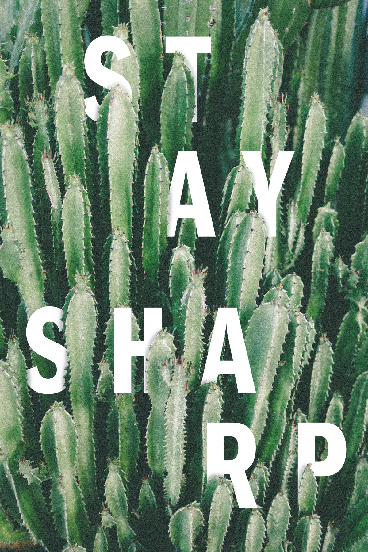 Stay Sharp-update