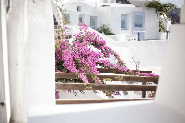 Susanne Hyams Photography - Santorini - 07