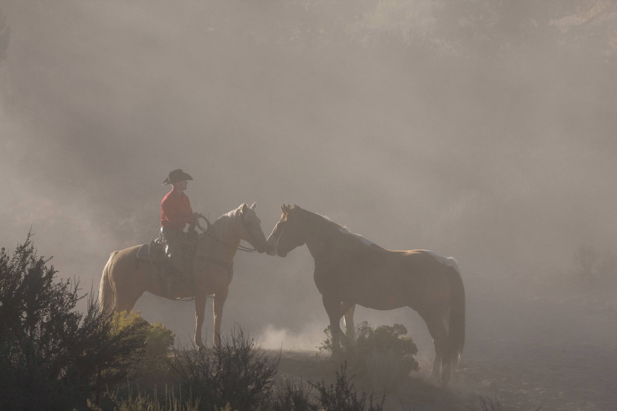cowboy with horses in dust photographer  Lynette Smith Photography