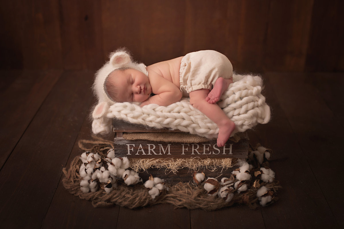 Traverse-city-newborn-photography-23.1