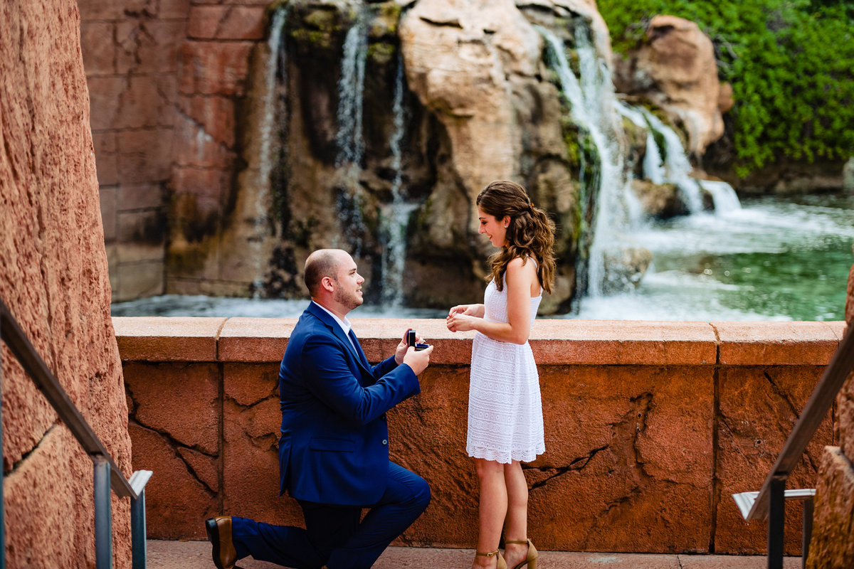 MikeandGabbyProposal_0005