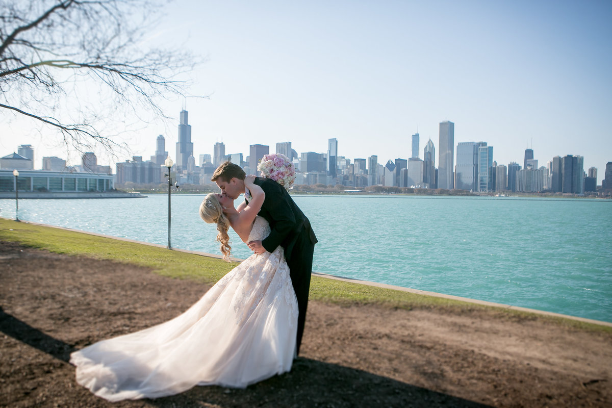 chicago wedding photographers, illinois photography, photographers, top (3 of 70)