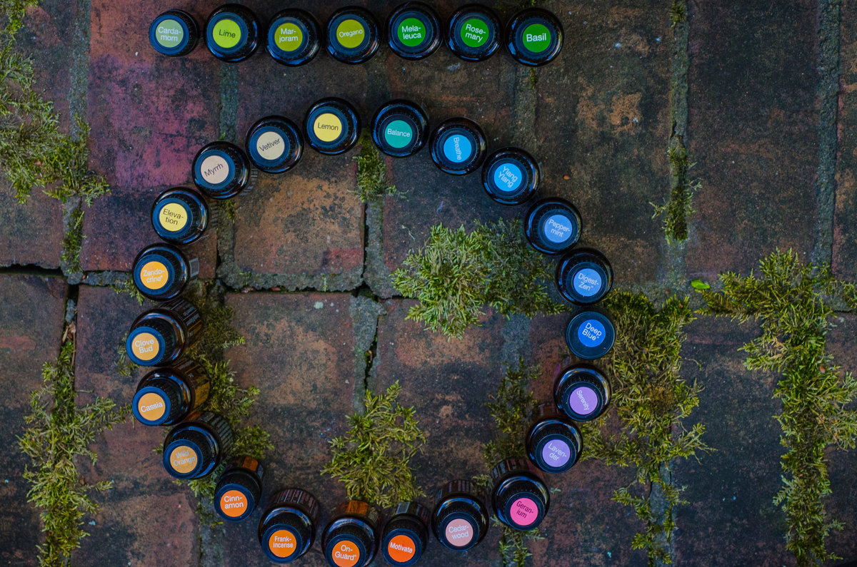 doTERRA essential oils placed in the doterra logo