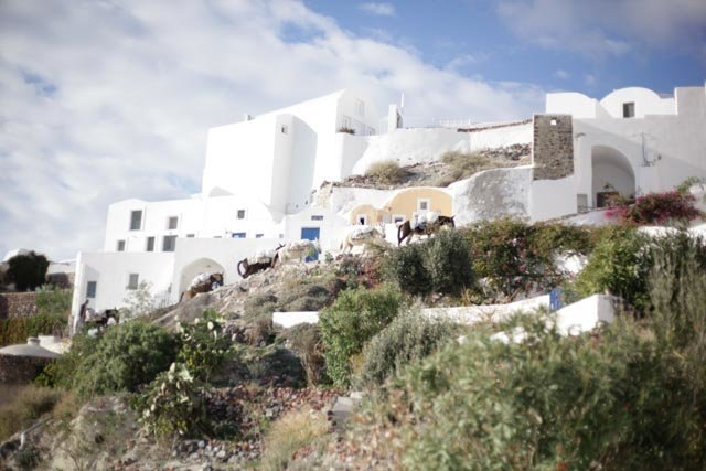 Susanne Hyams Photography - Santorini - 06