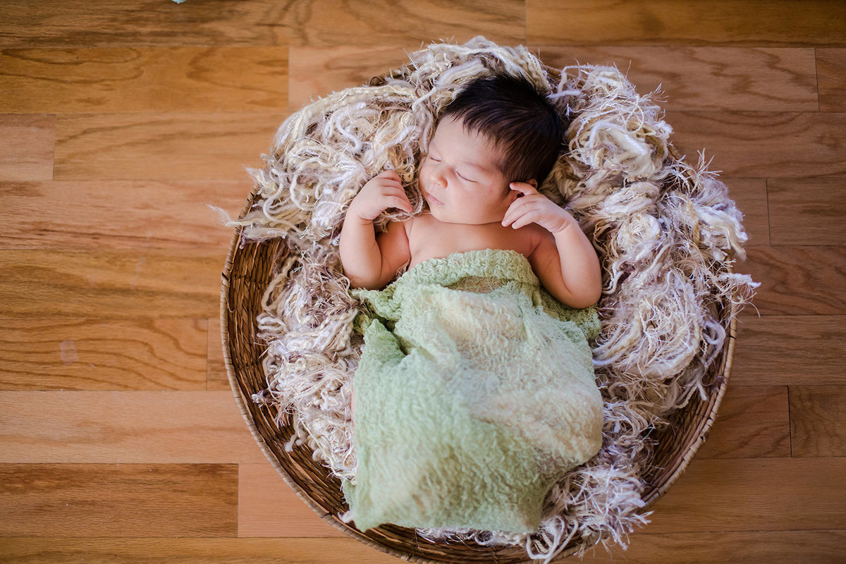 Newborn baby in basket photos