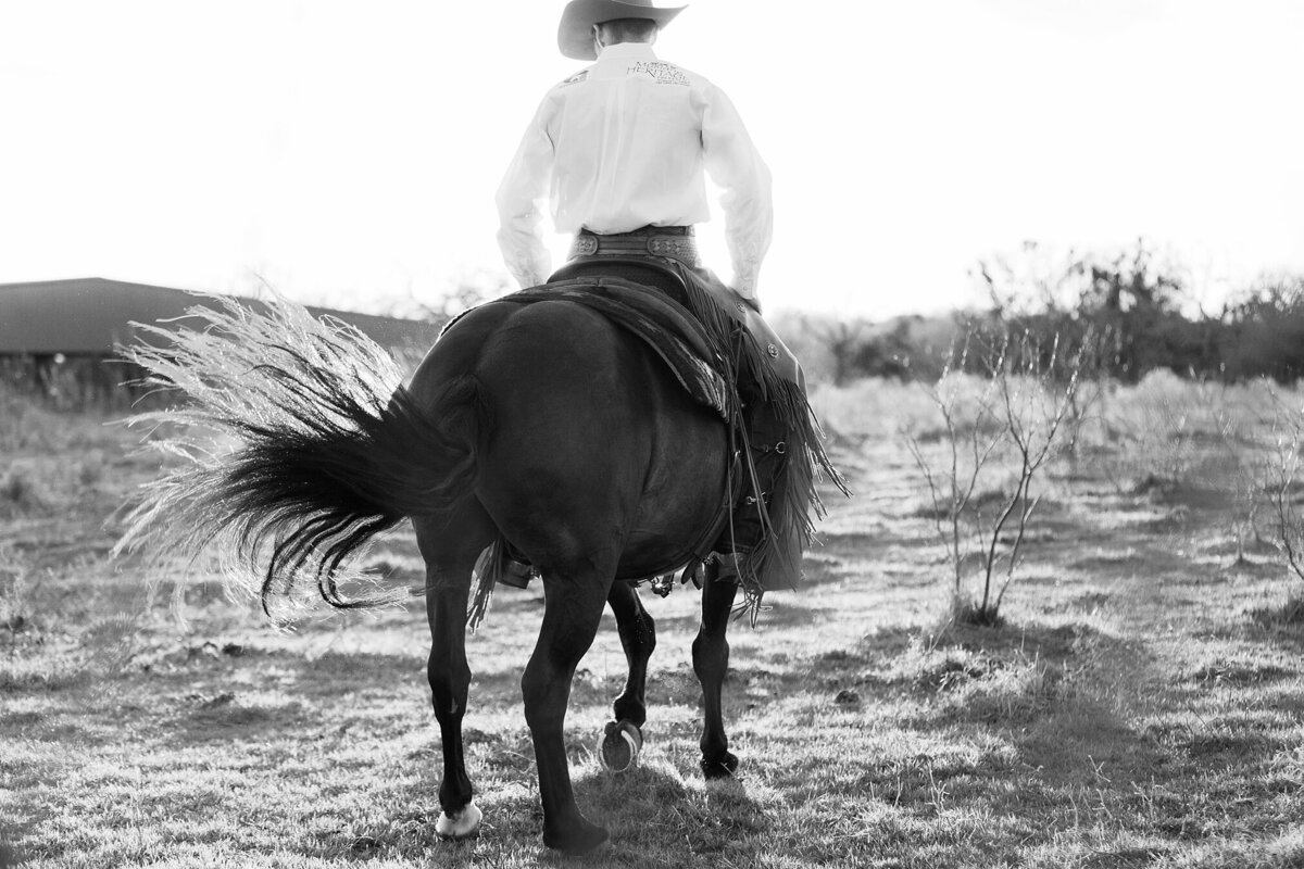 cowboy photographed from the back while he's spinning on his mustang horse