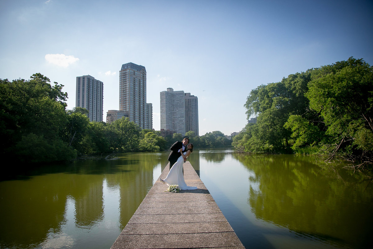 chicago wedding photographers, illinois photography, photographers, top (15 of 70)